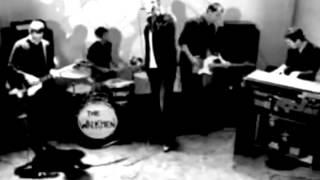 The Walkmen - The Rat (Official Video)