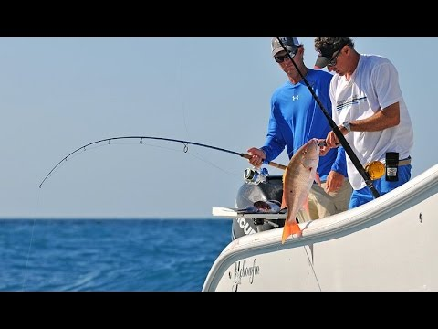 Into The Blue: Mutton Snapper Secrets