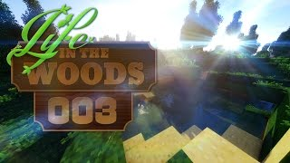 LIFE IN THE WOODS [003] [Kein Haus aber einen Swimmingpool] [MINECRAFT] [Deutsch German] thumbnail