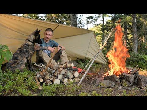 Overnight Bushcraft Camp with my NEW Dog-Wool Blanket, Tarp Shelter, Wild Blueberries.