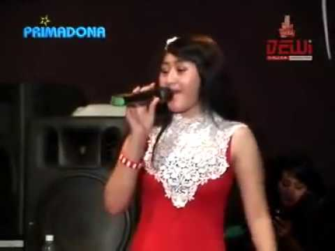 WIL.mp4 WANITA IDAMAN LAIN music by PRIMADONA MUSIC DANGDUT JEPARA