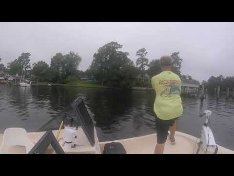 Topwater fishing off of the Pamlico River in Bath, North Carolina