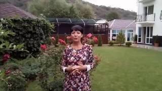 Магнолия гостевой дом Крым Солнечногорское(, 2016-07-24T08:48:10.000Z)