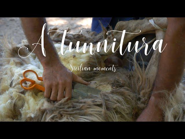 A TUNNITURA_Sicilianmoments [ENG SUB]