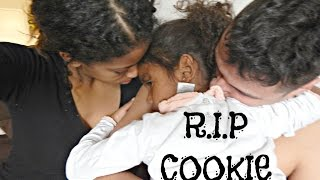 REST IN PEACE COOKIE