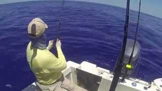Catching Mahi Mahi In The Abaco's, Bahamas
