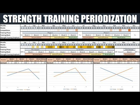 Complete Periodization for Strength Training | Optimizing Athletic Performance