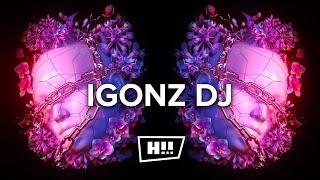 IGONZ DJ - Berlin Dreams [# HumanRave Techno Release]