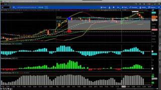 Trading Live Cattle Futures Using Seasonality & Price Momentum