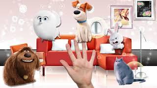 Песня для детей про животных семья пальчиков тайная жизнь домашних животных мисс Кэти и    #part 86