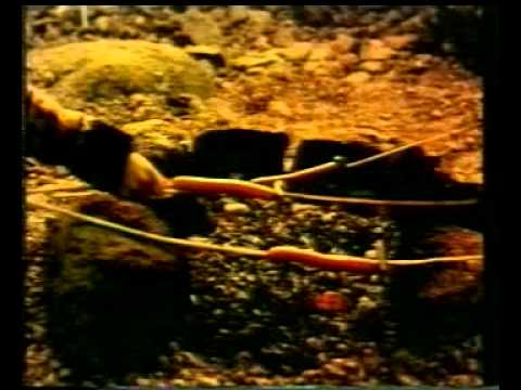 HERTA - 1995 KNACKI Original FR