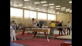 Спортивная гимнастика - лицом к зрителю?