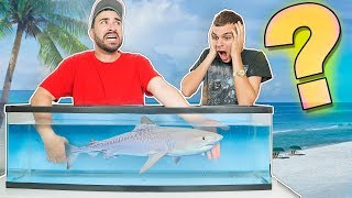 Whats in the Box CHALLENGE (UNDERWATER VERSION) ** TOUCHING POISON FISH **