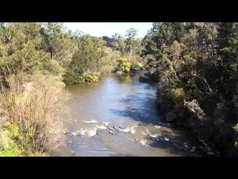 Warrandyte River Reserve - Yarra River, Melbourne Australia
