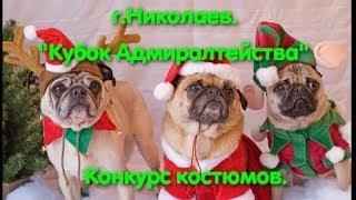 Выставка собак Николаев. Конкурс костюмов. Кубок Адмиралтейства. Костюм для собаки. Красивые собаки.