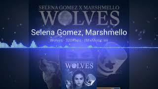 Selena Gomez, Marshmello    Wolves - Selena Gomez, Marshmello    Hollywood mp3 JUKEBOX
