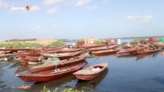 مصراوي يرصد الأسماك النافقة والصرف الصحي ابرز التعديات على بحيرة إدكو