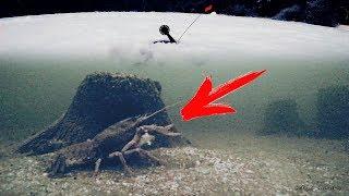 ШОК! РАК КЛЮНУЛ НА ЖЕРЛИЦЫ!!! Зимняя рыбалка на раков
