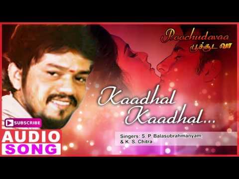 Kaadhal Kaadhal Song   Poochudava Tamil Movie Songs   Abbas   Simran   Sirpy   Music Master