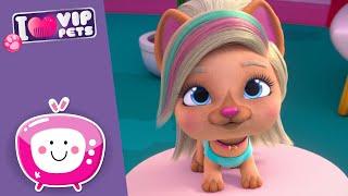 🎶 PETS DANCE WORLD 🎶 VIP PETS 🌈 Nuevo Episodio 💕 Vídeos para niños en ESPAÑOL