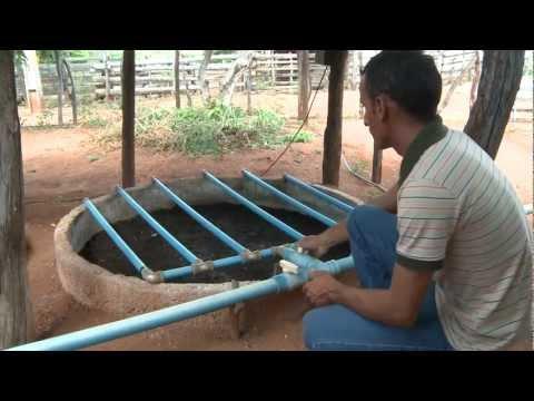 Brazil: Grey Water, Green Ground