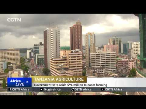 Tanzania Agriculture: Government sets aside $94 million to boost farming
