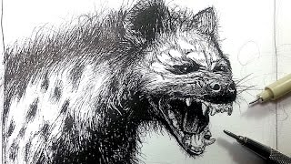 Pen & Ink Drawing Tutorials | Draw a Hyena