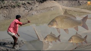 Net Fishing - Catching Fish With Cast Net - Net Fishing in the village Pond