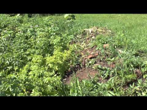 В селе Монастырском обнаружен крест разрушенной церкви