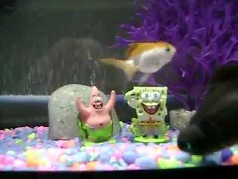 Spongebob fish tank patrick 39 s house youtube for Youtube fish tank