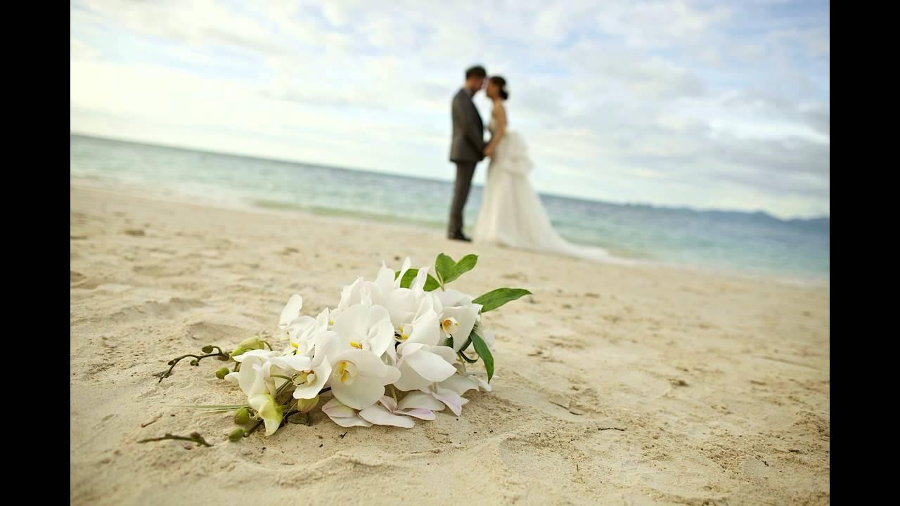 Песни мсц ехб свадебные