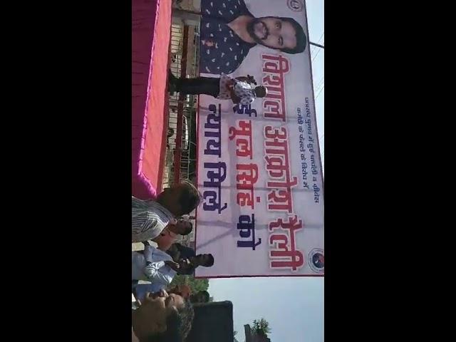 Jodhpur Live Mool Singh setrawa