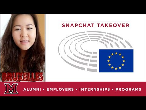 Linh's Office Internship for the European Parliament in Brussels, BE