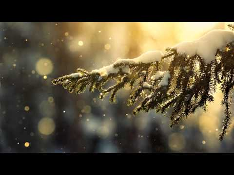 [HD] Fast Distance - Figueras (Original Mix)