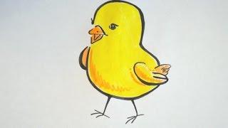 Как рисовать животных. Учимся рисовать цыпленка. Обучающее видео для детей. Сoloring animals