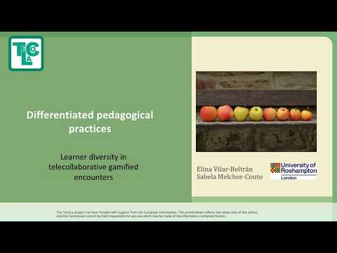 Seminar Roehampton 2017 - Learner diversity - Elina Vilar - Queen Mary University London