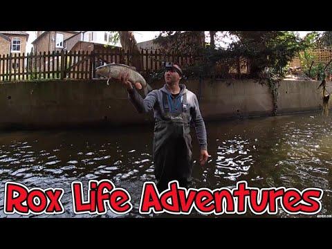 River Thames Chub Fishing
