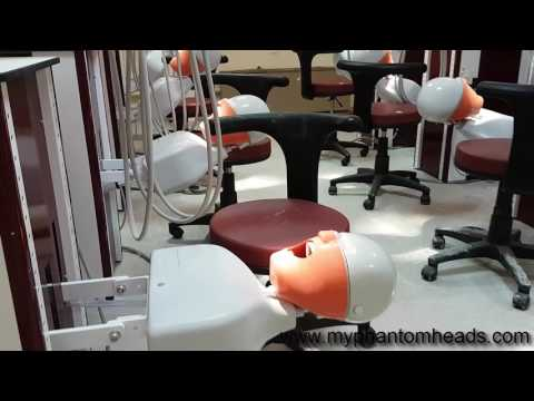 Dentistry Training Laboratory Design & Manufacturing