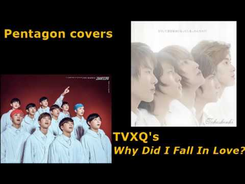 Pentagon - Why Did I Fall in Love? Line Distributions (TVXQ cover)