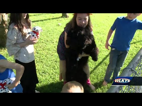 Girls call 911 after dog warns them of fire