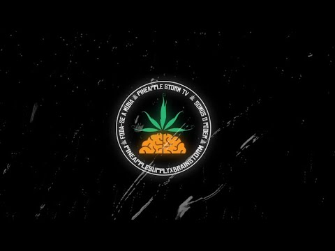 Pineapple x A Banca Rec  - Única Saída ( Da Paz | Dudu | Ducon | Mazin | Black | Chris Mc )