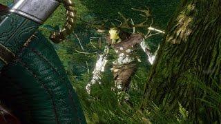 Witcher 3: Kernun the Leshen Boss Fight (Hard Mode) (4K 60fps)