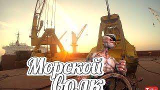 Морской Волк #1| Hamburg ship | Первый день на судне