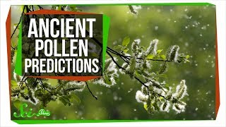 How Ancient Pollen Can Predict The Future