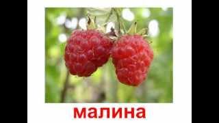 Презентация для детей по Доману. Растения ягоды