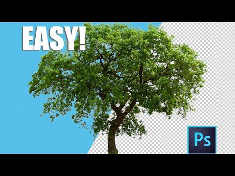How to REMOVE Backgrounds with COLOR RANGE Tool in Photoshop! Easy and Fast Tips for Beginners!