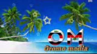 Download New best Nashida oromo 2018 baredadha caqasa Masha Allah Mp3