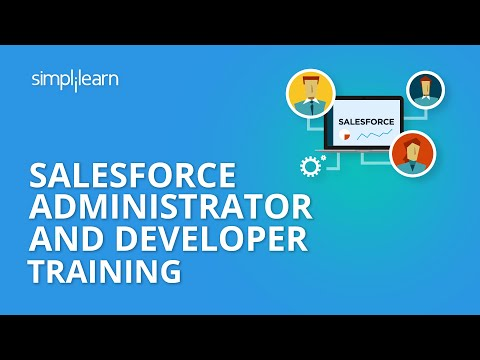 Salesforce Administrator And Developer Live Demo Class | Sal