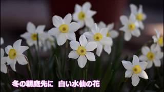 雪に咲く(みずき舞)♪♪カバー(キー:♯1)