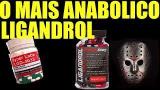 O SARM MAIS ANABOLICO - LIGANDROL (LGD-4033)